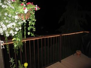 rope lights around the railing......Ken loved these!