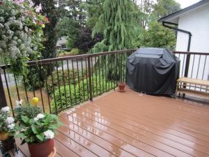 rain, rain go away........